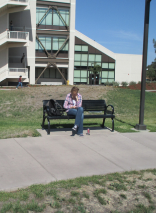 DELTA COLLEGE PLAZA: The brand new green space is showing brown results of reduced watering. PHOTO BY KRISTEN RIEDEL
