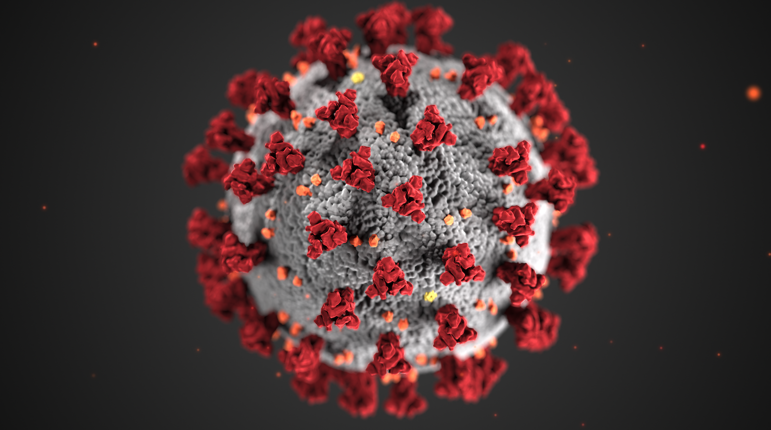 Decorative artistic render of the COVID-19 virus